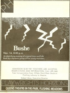 Bushe-1